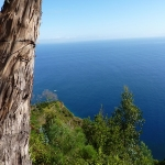 around Madeira_09.JPG