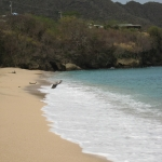 Bequia_Beach_5.JPG