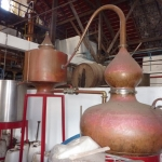Destillerie_2.JPG