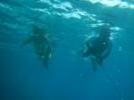firstspearfishing_07