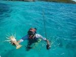 firstspearfishing_10