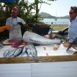 FishMarket_3.JPG