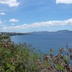 Green_Martinique_1.JPG
