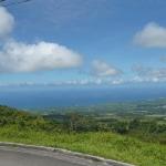 Green_Martinique_3.JPG