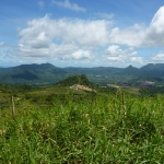 Green_Martinique_4.JPG