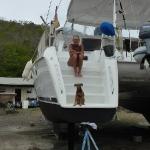 Grenada_Marine_8.JPG