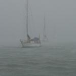 Heavy_Rain_Le_Marin_1.JPG