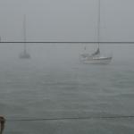 Heavy_Rain_Le_Marin_4.JPG