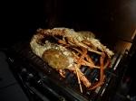 lobster_09