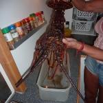 LobsterDinner_Bagalut_1.JPG