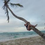 Palm_climbing_1.JPG
