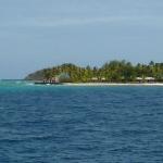 Palm_Island_01.JPG