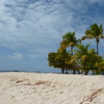 Palm_Island_07.JPG