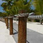 Palm_Island_09.JPG
