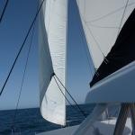 Sail-again_04.JPG