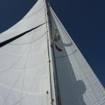 Sail-again_08.JPG