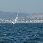 Sail-again_09.JPG