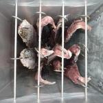 Smoked_Fish_06.JPG