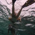 Snorkel_Cays_1.JPG