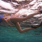 Snorkel_Cays_3.JPG