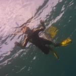 Snorkel_Purina_01.JPG