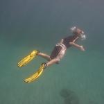 Snorkel_Purina_02.JPG