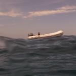 Snorkel_Purina_09.JPG