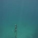 Snorkel_Purina_11.JPG