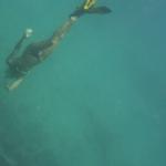 Snorkel_Purina_12.JPG