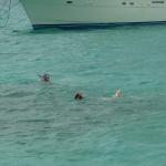 Snorkel_Tobago_02.JPG