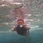 Snorkel_Tobago_04.JPG