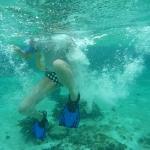 Snorkel_Tobago_Cays_2.JPG