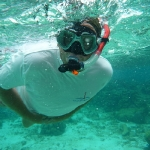 Snorkel_Tobago_Cays_3.JPG