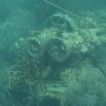 Snorkeling-Purina_04.JPG