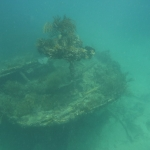 Snorkeling-Purina_10.JPG