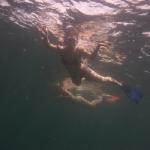 Snorkeling_Mayreau_3.JPG