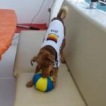 Soccer_Chico_3.JPG