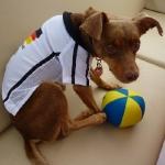 Soccer_Chico_7.JPG
