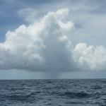 Squalls_Martinique_2.JPG