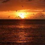 Sunset_Chatham_4.JPG
