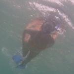 Tobago_Cays_2.JPG