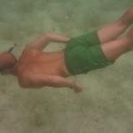 Turtle-_Dive_01.JPG