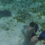 Underwater-TobagoCays_15.JPG