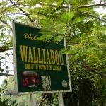 Wallilabou_09.JPG