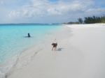 bahamas5321
