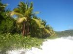 white_beach_05