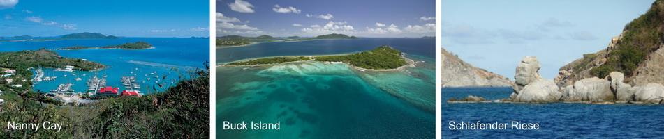 buck_island