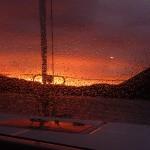 Sunrise Trellis_4