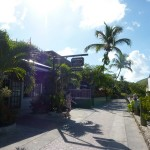Way to the BVI_12